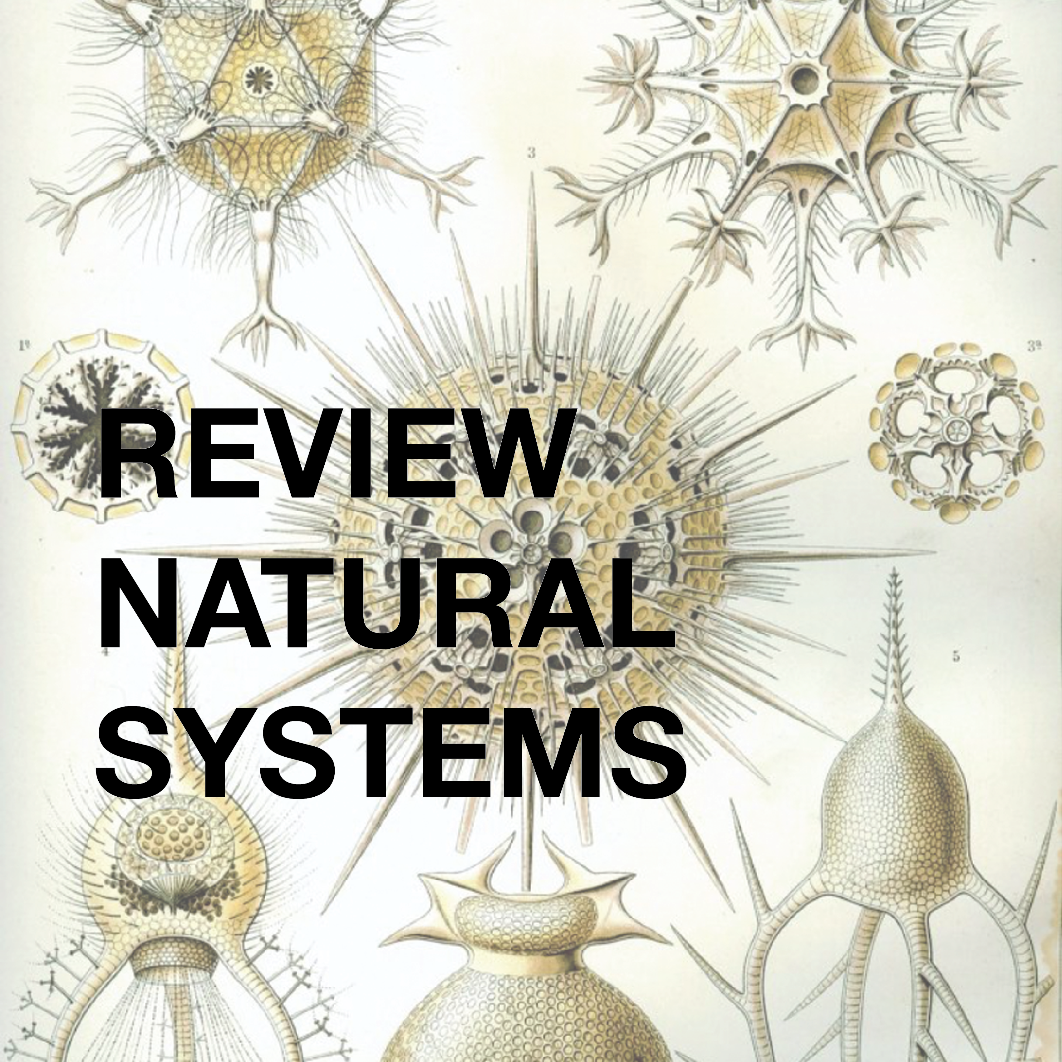 REVIEW NATURAL SYSTEMS